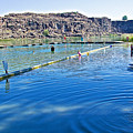 Docks Form Perimeter Of Dierkes Lake In Snake River  Near Twin Falls-idaho  by Ruth Hager
