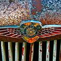 Dodge by Gwyn Newcombe