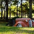 Dodge Ram Yard Art 2 by Warren Thompson