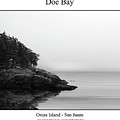 Doe Bay by William Jones