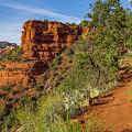 Doe Mountain Trail by Jessica Giannone