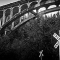 Dog Creek Bridge Railroad  Crossing by Michele  James