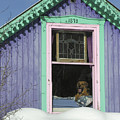 Dog Days Of Winter by Dusty Demerson