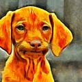Dog Friend by Leonardo Digenio