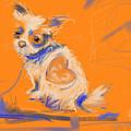 Dog Heart by Go Van Kampen