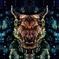 Dog II by Zandonai Augusto