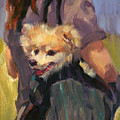 Dog In A Backpack by Merle Keller