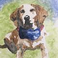 Dog In Bow Tie by Mary Lynn Smith