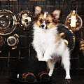 Dog On A Dark Background In The Style Of Steampunk by Iuliia Malivanchuk