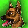 Dog by Vitaly Yankin