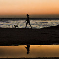 Dog Walker At Sunset by Grace Dillon