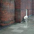 Doggie  Strolling 2 by Jez C Self
