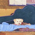 Doggy In The Guitar Case by Michelle Powell