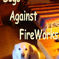 Dogs Against Fireworks by Robert Morrissey