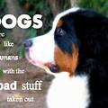 Dogs by Patti Whitten