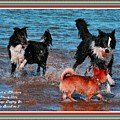 Dogs Playing On The Beach No. 2 L A With Decorative Ornate Printed Frame. by Gert J Rheeders
