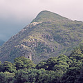 Dolbadarn Castle Close To Llanberis Pass by Monika Tymanowska