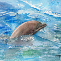 Dolphin  by Arline Wagner