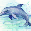 Dolphin Watercolor by Olga Shvartsur