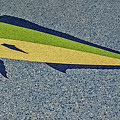 Dolphinfish Inlay On Alabama Welcome Center Floor by Marian Bell