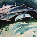 Dolphins by Laura Rispoli