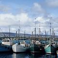 Donegal Fishing Port by John Farley