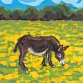 Donkey And Buttercup Field by Sarah Gillard