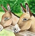 Donkey Duo by Lyn DeLano