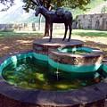Donkey Fountain by Barbie Corbett-Newmin
