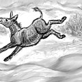 Donkey Frolicking In The Snow by Dawn Senior-Trask