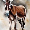Donkey by Ilse Kleyn