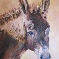 Donkey In The Sunlight by Leonie Bell