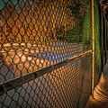Don't Fence Me In by Chroma Photographer