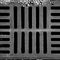 Don't Forget The Drains Bw by Tim Richards