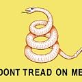 Don't Tread On Me by American School