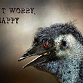 Don't Worry  Be Happy by Kaye Menner