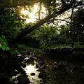 Doonally Co. Sligo Ireland. by Louise Macarthur Art and Photography