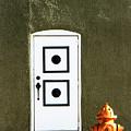 Door And Orange Hydrant  by Amy Sorvillo