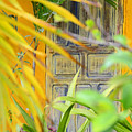 Door To Paradise by Tom Hollett