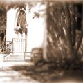 Door To Yesterday by Lauren Radke