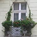Door Topiary by Karen Granado