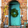 Door With Holiday Reef by Javier Flores