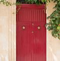 Doors Of The World 79 by Sotiris Filippou