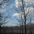 Dormant Blues by Dylan Punke