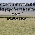 Dorothea Lange Quote by Tony Murtagh