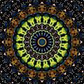 Dotted Wishes No. 3 Kaleidoscope by Joy McKenzie