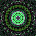 Dotted Wishes No. 6 Kaleidoscope by Joy McKenzie