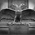 Double Headed Bird In Vienna by Gregory Dyer