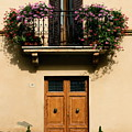 Double Doors And Balcony by Sally Weigand