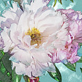 Double Peony by Mark Mille